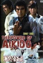 Gekitotsu! Aikidô (1975) afişi