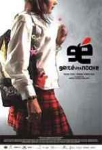 Grite Una Noche (2005) afişi