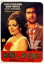 Gül Ayşe (1969) afişi