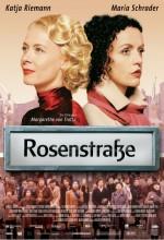 Güller Sokağı (2003) afişi