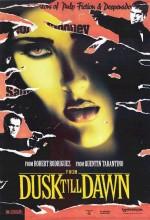 Gün Batımından Şafağa (1996) afişi