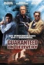 Güvenlikçi (2001) afişi