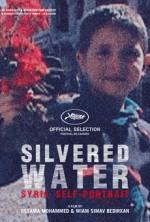 Gümüşlü Su, Suriye'nin Otoportresi (2014) afişi