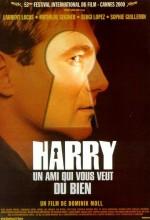 Harry, İyiliğinizi İsteyen Bir Dost (2000) afişi