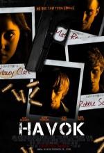 Havok (2010) afişi
