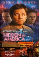 Hidden in America (1996) afişi