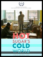 Hot Sugar's Cold World (2015) afişi