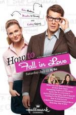 Nasıl Aşık Olunur (2012) afişi