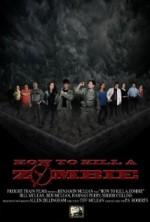 How to Kill a Zombie (2014) afişi