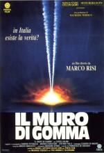 ıl Muro Di Gomma (1991) afişi