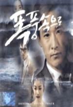 Into The Storm (1997) afişi
