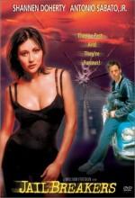 Jailbreakers (1994) afişi