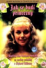 Jak Se Budí Princezny