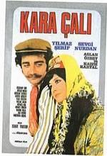 Kara Çalı (1973) afişi