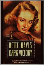 Karanlık Zafer (1939) afişi