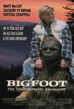 Koca Ayak: Unutulmaz Karşılaşma (1994) afişi