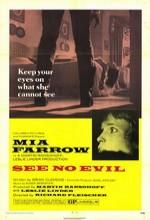 Korkunun İçinde (1971) afişi