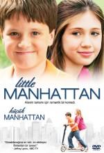 Küçük Manhattan (2005) afişi