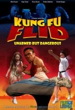 Kung Fu Flid