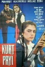 Kurt Payı (1988) afişi