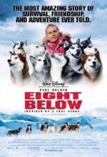 Kutup Macerası (2006) afişi