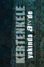 Kertenkele (2014) afişi
