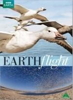 Kuş Bakışı Dünya (2011) afişi