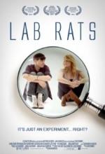 Lab Rats (2010) afişi