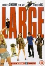 Large (2001) afişi
