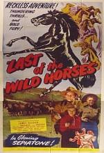 Last Of The Wild Horses (1948) afişi