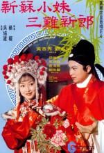 Learned Bride Thrice Fools Bridegroom (1976) afişi