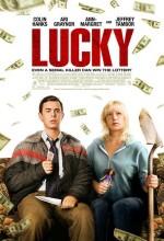 Ölümcül Şans (2011) afişi