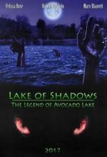 Lake of Shadows  (2017) afişi