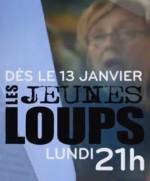 Les Jeunes Loups (2014) afişi