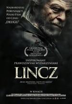 Linç (2010) afişi