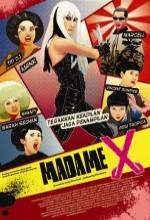 Madame X (ııı) (2010) afişi