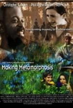 Making Metamorphosis (2001) afişi