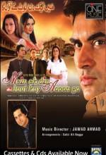 Mein Ek Din Laut Kay Aaoon Ga (2007) afişi