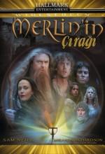 Merlin'in Çırağı (2006) afişi