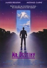 Mr. Destiny (1990) afişi