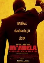 Mandela: Özgürlüğe Giden Uzun Yol (2013) afişi