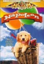 Napoleon (1995) afişi