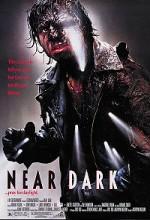 Near Dark (2009) (2009) afişi