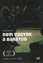 Arkadaşın Değilim (2009) afişi