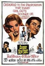 Sunday in New York (1963) afişi
