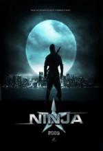 Ninja (2009) afişi