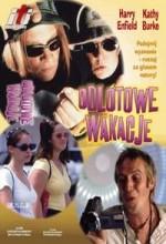 Odlotowe Wakacje (1999) afişi