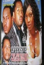 Offensive Relationship (2008) afişi