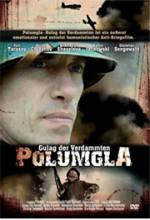 Polumgla