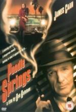 Poodle Springs (1998) afişi